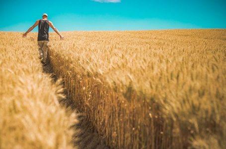 Agricultores são capacitados para uso de recursos públicos